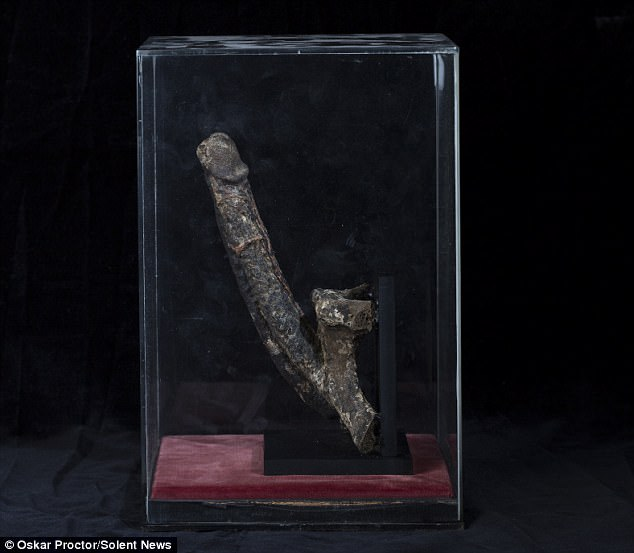 Mummified erection
